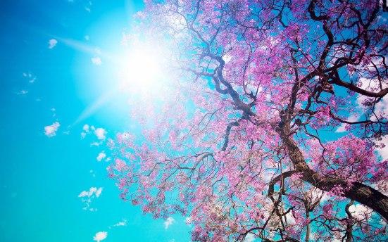 spring-10.jpg